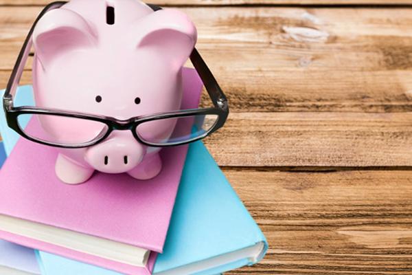Alcancía rosa en libros