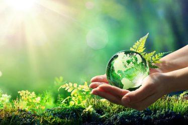 Crecimiento económico y sustentable